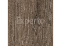 EXPERTO Click Apollo - European Oak 2870